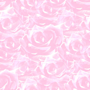 Closeup Light Pink Roses Background Image Wallpaper Or