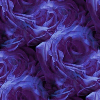 Dark Purple Roses Background Image Wallpaper Or Texture