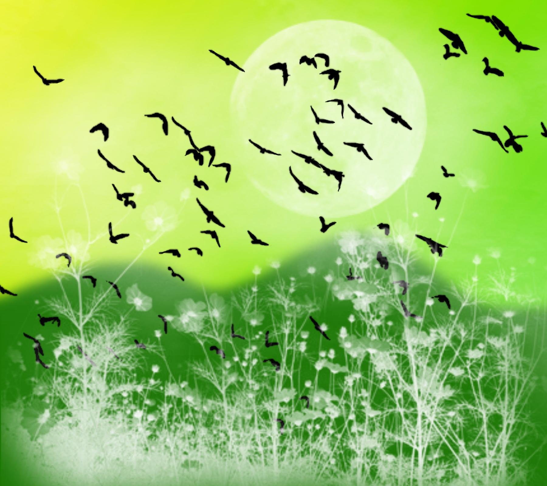 Free Fantasy Landscape Witn Birds Background Yellow Green ...