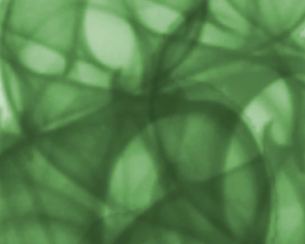 green pattern backgrounds - photo #47