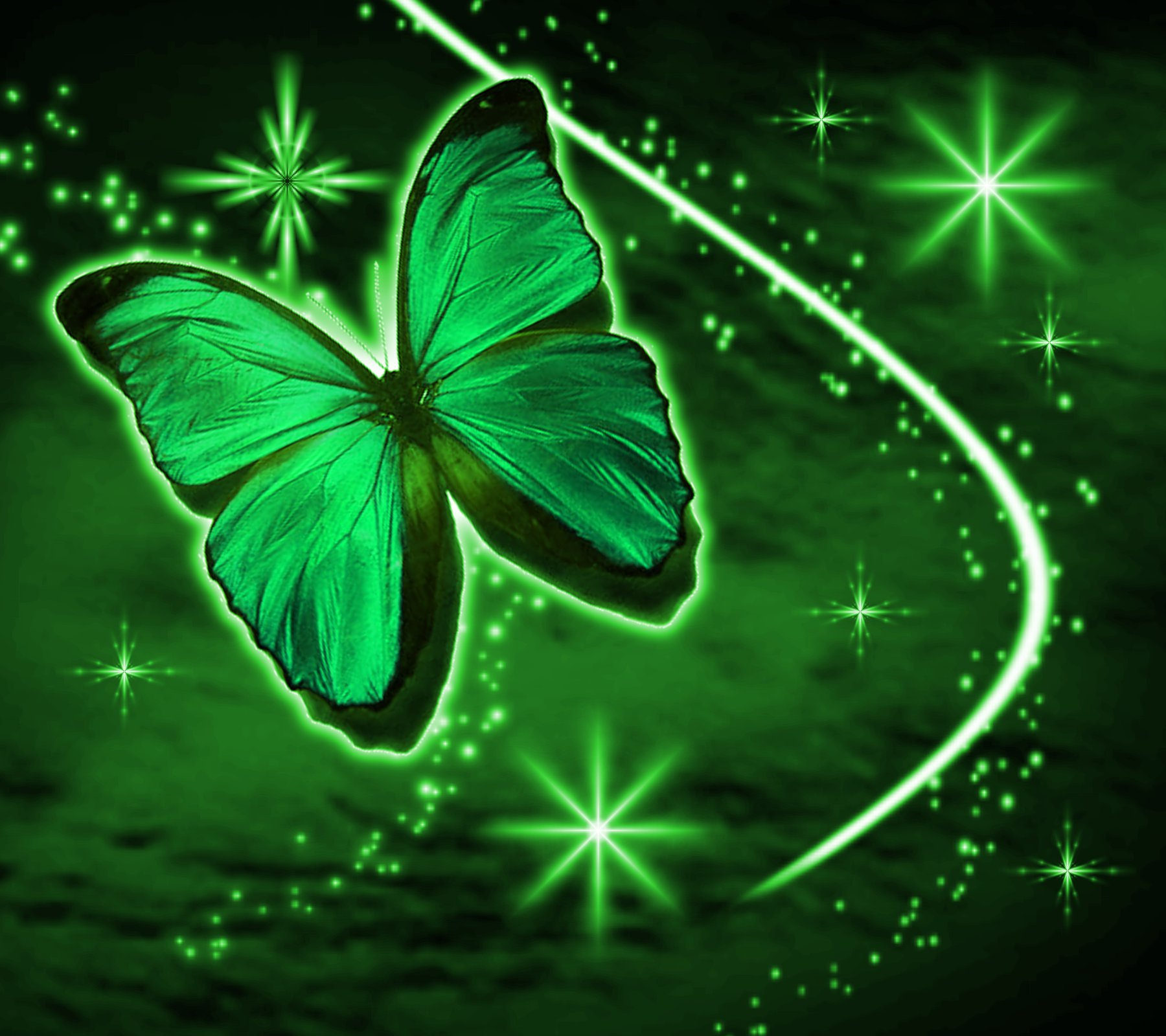 Green Butterfly With Stars Background 1800x1600 Background