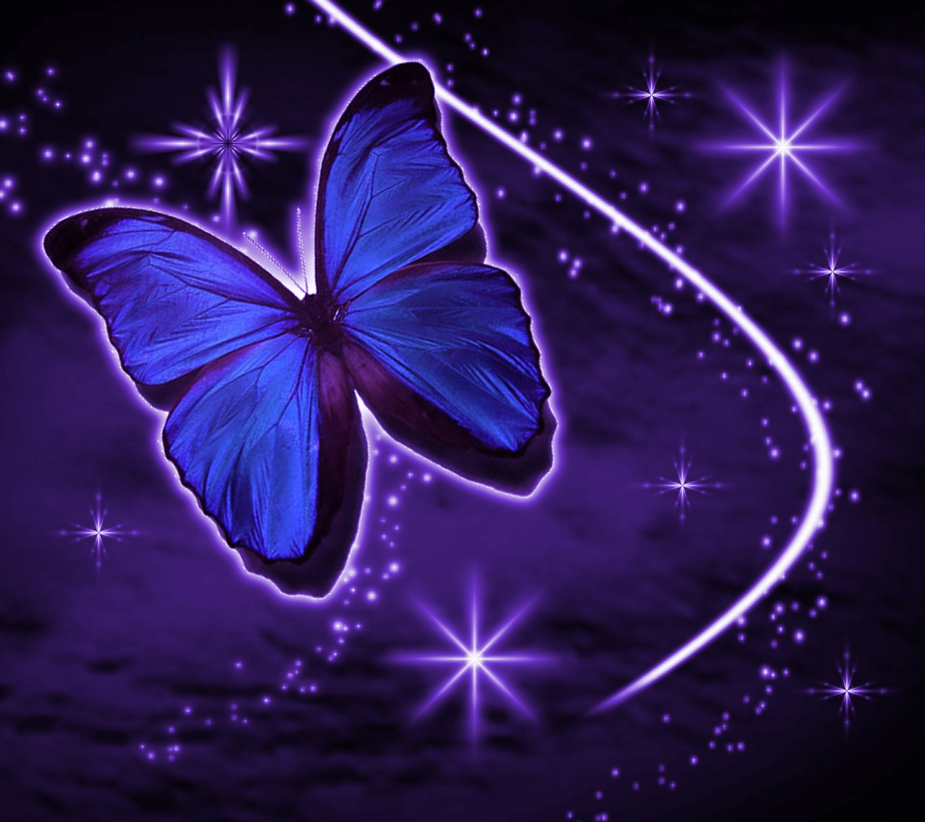 free purple butterfly with stars background 1800x1600