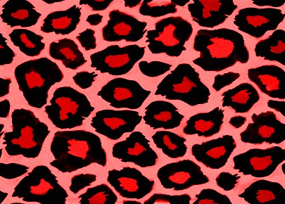 leopard and red wallpaper - photo #4
