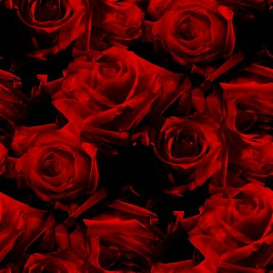 Red Roses Pattern Background Image Wallpaper Or Texture